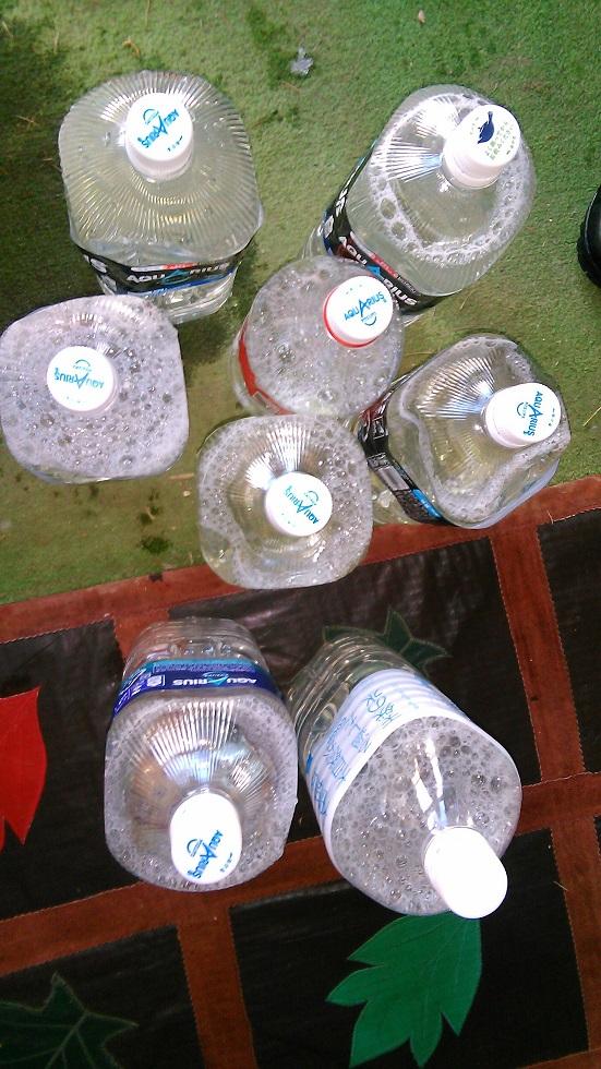 シラカバの樹液