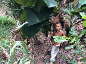 自然と子ども